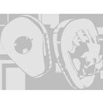 Boxclub 1.FC Nürnberg - boxen, profi boxen, boxer, wettkampf boxen, kampfschule nürnberg, box schule nürnberg, kampfsport, fitness, fitness boxen, gesund durch boxen, sport, selbstverteidigung, kampfkunst boxen, kampfsport für jung und alt,  selbstbewusstsein. respekt